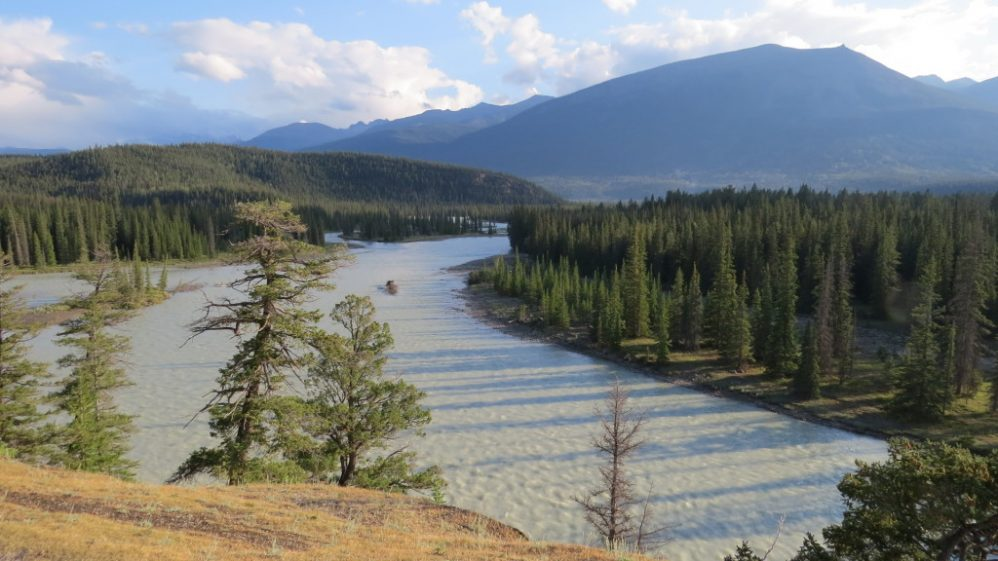 Jasper Athabasca River