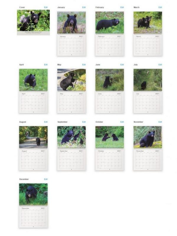 Bear calendar overview