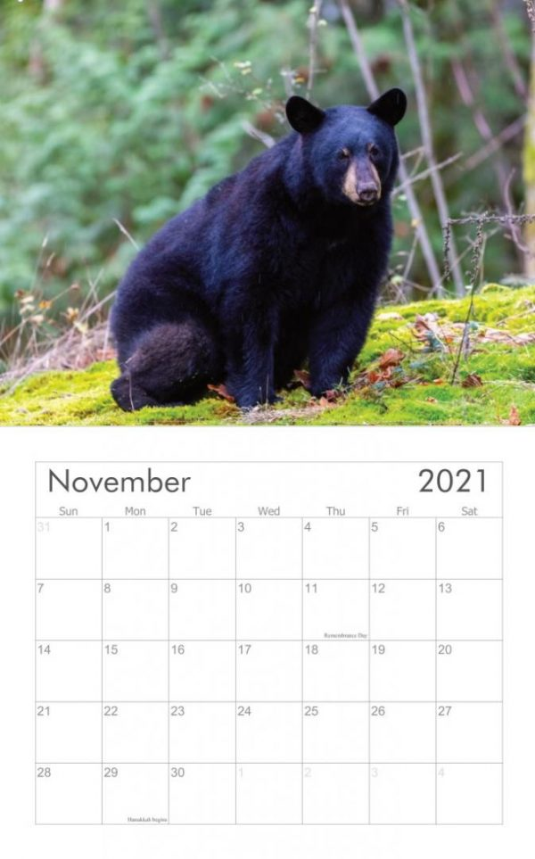 Bear calendar sample month view